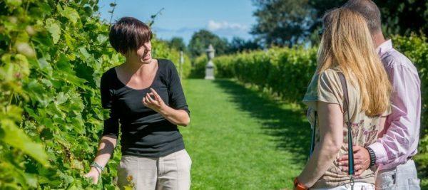 Provence Tour Guides