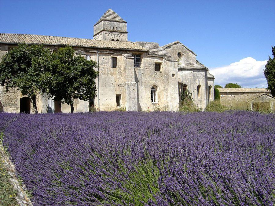 Saint Paul de Mausole Guided Tours