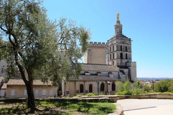 Avignon Guided Tour