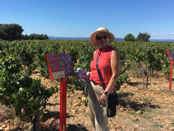 Chateauneuf du Pape Shore Excursions 5