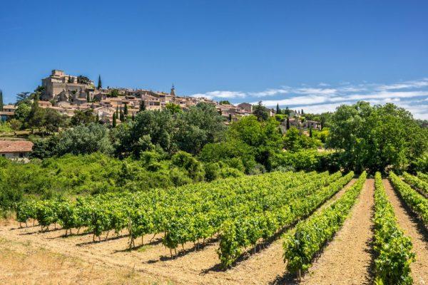 Luberon Wine Tour, Luberon Wine Tasting