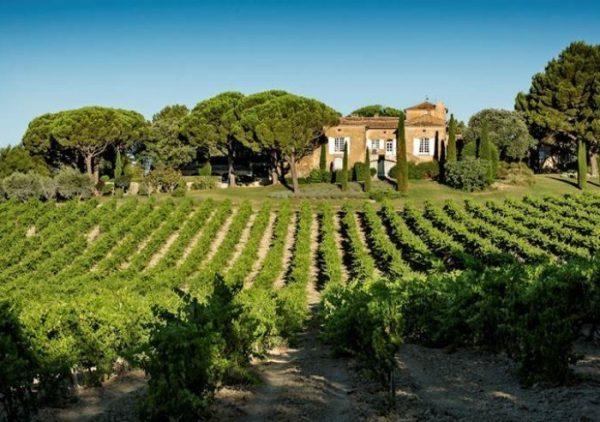 Luberon Wine Tour La Verrerie