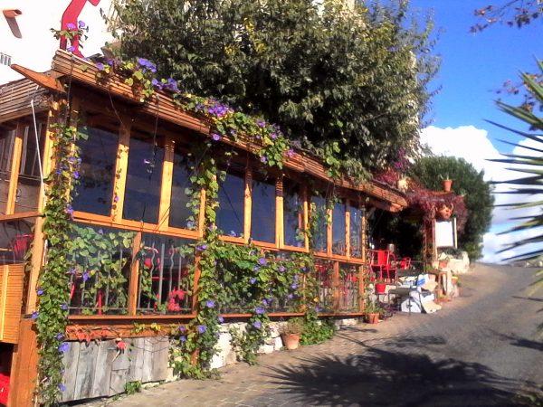 Provence Private Tour Le Castellet 1 e1547892763925