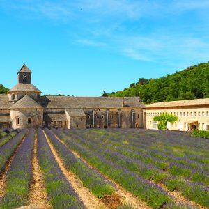 abbaye de senanque tours