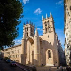 provence private tour montpellier cathedral