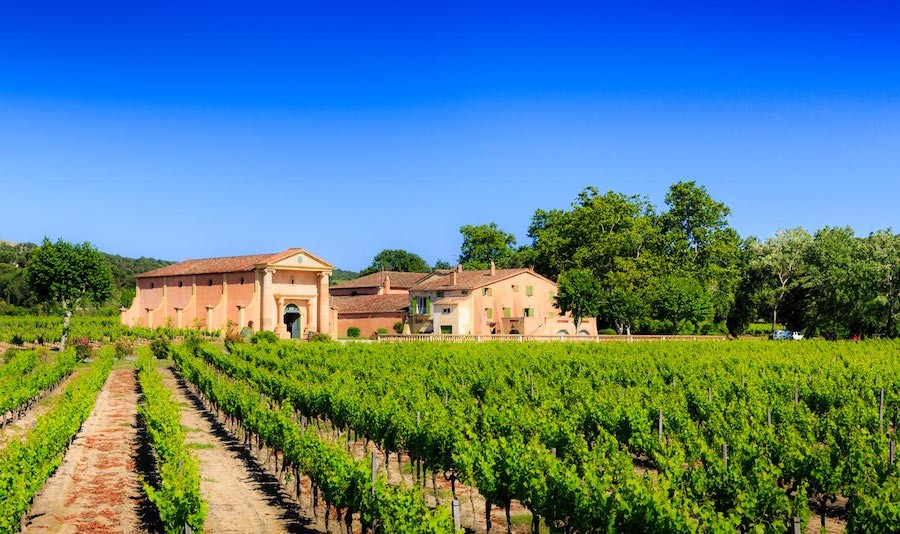 Saint Tropez Wine Tasting Dicaprio Foundation Gala Wine