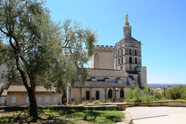 Avignon Guided Tour