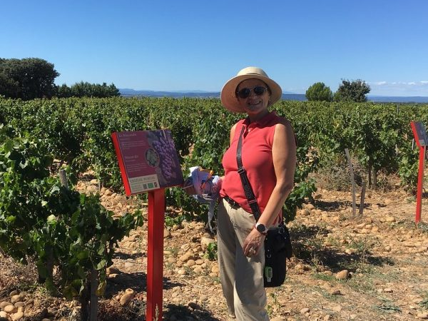 Chateauneuf du Pape Shore Excursions 5