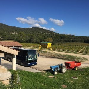 Provence Wine Tours 16
