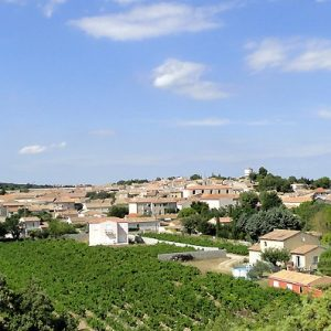 Tavel Wine Tour, rhone wine tour